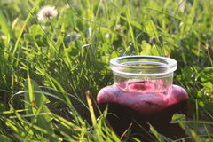 Summer drink in the grass. You can see one smoothie in grass royalty free stock image