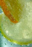 Summer Drink II. Lemon and orange in bubbling gin and tonic drink royalty free stock photo