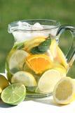 Summer drink. Jug with fresh fruit lemonade in a garden stock photography