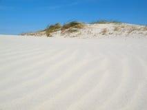Summer dunes. Near the ocean Stock Photography