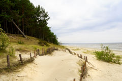 Summer dunes on the coast of the Baltic sea Stock Photography