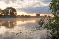 Summer. Early morning. Sunrise. Mirror surface of the pond with a haze of fog. Stock Photos