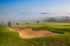 Summer on the empty golf course Stock Image
