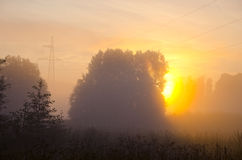 Summer end misty morning dawn Stock Images