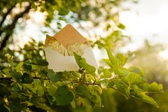 Soon autumn, the leaves turn golden. Summer ends. A letter from the autumn. Envelope with golden leaves on the branches of a tree in the park stock photos