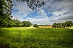 Summer in England. Gloucestershire England countryside in June Stock Photo
