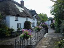 Summer evening in a Devon village UK Stock Images