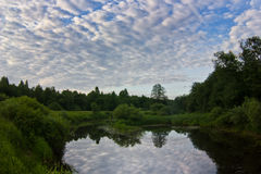 Summer evening on the forest river Stock Photography