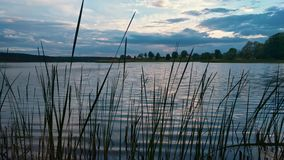 Summer evening at lake with dramatic sky and reflection in water and grass on foreground.  stock video