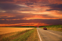 Summer evening landscape Royalty Free Stock Photos