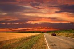 Summer evening landscape Royalty Free Stock Photos