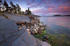 Summer evening landscape Stock Photos