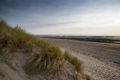 Summer evening landscape view over grassy sand dunes on beach Royalty Free Stock Image