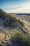 Summer evening landscape view over grassy sand dunes on beach wi Royalty Free Stock Photography