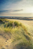 Summer evening landscape view over grassy sand dunes on beach wi Royalty Free Stock Photos
