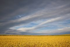 Before rain in Central Bohemian Uplands Royalty Free Stock Image