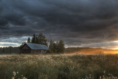 Summer evening on the meadow. In Finland at midsummer Royalty Free Stock Photo