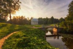 Summer evening in Pavlovsk park Stock Photography