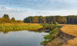 Summer evening at the quiet river Stock Image
