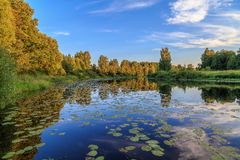 Summer evening, the river with water lilies. The sky light clouds Royalty Free Stock Photos