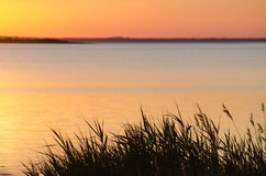 Summer evening sunset Royalty Free Stock Images