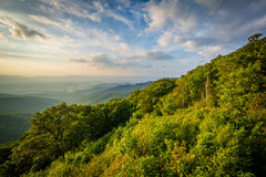 Summer evening view of the Shenandoah Valley from Franklin Cliff Stock Image