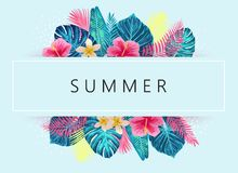 Summer exotic and tropic background design. Stock Photos