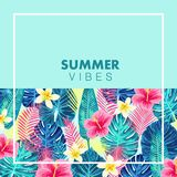 Summer exotic and tropic background design. Royalty Free Stock Photos