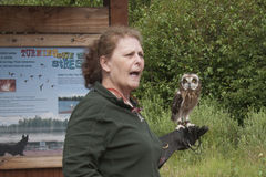 Summer Family Fun Day Reflections Lake Alaska. Owl Rescue Bird lecture during Alaskans for Palmer Hay Flats Summer Family Fun Day at Reflections Lake in Palmer Royalty Free Stock Images