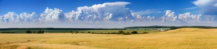 A summer on the farm Stock Photos