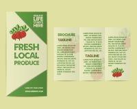 Summer Farm Fresh flyer template or brochure Royalty Free Stock Photography