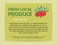 Summer Farm Fresh poster, template or brochure Royalty Free Stock Photos