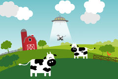 Summer on a farm. Royalty Free Stock Image