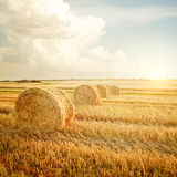 Summer Farm Scenery with Haystack Stock Photography