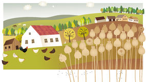 Summer farm. Vector illustration of poppy fields and farm Royalty Free Stock Image