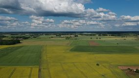 Summer farmland with yellow rapeseed fields panorama, aerial stock video