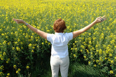 Summer feeling. Concept of a young woman in a flower field Stock Photography