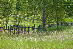 Summer Fences. A picket fence and split rail fence in the summer with trees and tall field grasses growing in a field/meadow Stock Photos