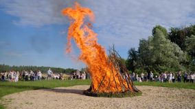 Summer festivities near bonfire on open air, many of people walk around bright fire in forest, clear sky stock video