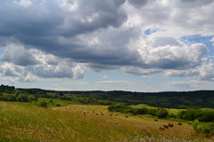 Summer field. This is a scenery from the center of Romania showing the fields in summer Royalty Free Stock Images