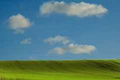 Summer field. Field with grass, and bleu sky, blue sky Royalty Free Stock Photography