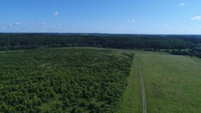 Summer field aerial view. From drone 4K stock video