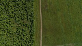 Summer field aerial view. From drone 4K stock footage