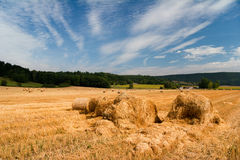 Summer Field with bale of straw Royalty Free Stock Photos