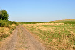 Summer field. With burned grass and road in Russia stock photo