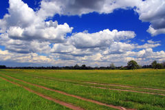 Summer field with clouds Royalty Free Stock Images