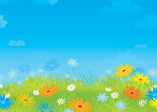 Summer field with flowers. Colorful illustration of a sunny meadow with wildflowers Stock Photography