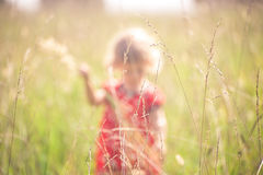 Summer field with grass and girl in red dress in background Stock Image