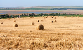 Summer Field with Hay Bales as background Stock Photography
