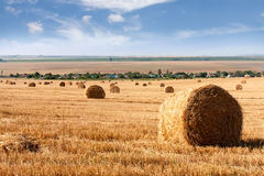 Summer Field with Hay Bales as background Stock Photos